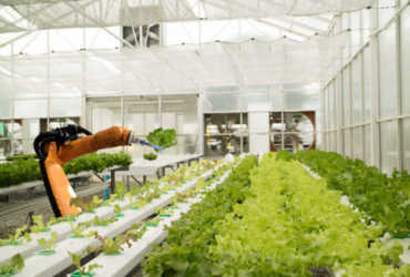 Cultivating Security in the Food Production Industry